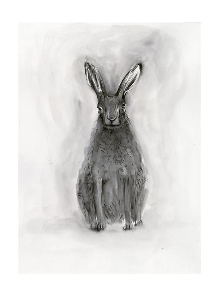 <p>Hare</p>