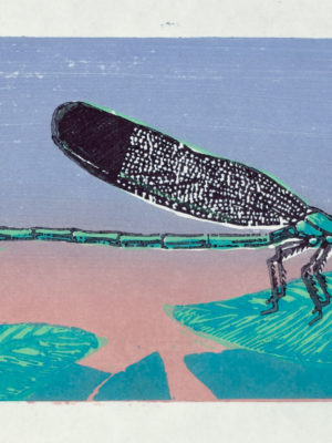 Dragonfly Woodblock